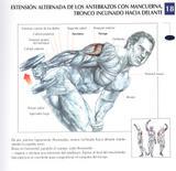 http://img126.imagevenue.com/loc463/th_74209_Brazos_08__Extension_alternada_de_antebrazos_con_mancuerna_122_463lo.jpg